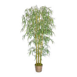 Laura Ashley - Bamboo Tree with Wicker Basket Planter - Constructed from Plastic, polyester, bamboo, moss, foam, glue, wire, wicker. Planter-Container Included. Beautiful lifelike bamboo tree in a wicker basket planter. No need to shop for a planter separately - comes complete with decorative planter. High-quality artificial plant and real bamboo trunks combine to offer years of beauty with virtually no maintenance. Add life to your decor, place in a corner to soften edges and make a room more welcoming. Bamboo is a natural material that absorbs color in various degrees - this natural product will have slight color variations that make the product more lifelike and enhance the beauty of the item. 32 in. L x 32 in. W x 73 in. H (10.67 lbs.)The Laura Ashley Brand is known for harmonizing tranquil colors and classic shapes allowing you to bring the calm feel of Zen to your home or office decor. Our bamboo tree features thousands of airy bamboo leaves on natural stocks. Bamboo is a natural material that absorbs color in various degrees, and these natural trunks have slight color variations that make the product more lifelike and enhance the beauty of the item. And, there is no need to shop for a planter separately - the basket planter pictured is included. Plants add a feeling of life to a room, making it warmer and more welcoming; artificial plants let you decorate without concern for water damage, trimming, or soil. This high quality tree is brought to you by Vintage Home - setting the standard in permanent botanicals, Vintage Home products bring you a richer and more realistic plant.