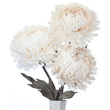 Contemporary Artificial Flowers Plants And Trees by Z Gallerie