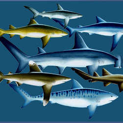"Concord Global - National Geographic Photographic 2'7"" x 4'1"" Rugs Sharks Blue Animal Prints (937 - Sharks have to keep swimming or they will sink!"