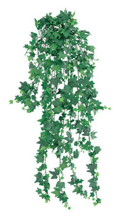 Silk Plants Direct - Silk Plants Direct Mini English Ivy Hanging Plant (Pack of 6) - Silk Plants Direct specializes in manufacturing, design and supply of the most life-like, premium quality artificial plants, trees, flowers, arrangements, topiaries and containers for home, office and commercial use. Our Mini English Ivy Hanging Plant includes the following: