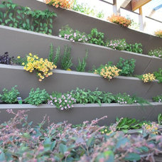 outdoor planters by H2O Designs