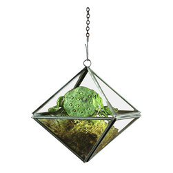 Pierre Geometric Hanging Terrarium - Octahedron - Art Deco impressions and refined, pure geometry create harmonious magnificence in the Pierre Terrarium, a transitional European accessory that serves versatile purposes as a Wardian case, a shelter for a grouping of candles, or a more stately and architectural alternative to the cloche for surrounding your vignettes. The Octahedron shape is a particularly elite element in this handsome piece.