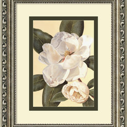 Amanti Art - Morning Magnolia Framed Print by Waltraud Fuchs Von Schwarzbek - This fragrant blossom is captured beautifully in Waltraud Fuchs Von Schwarzbek's print. The gorgeous, antique silver wood frame perfectly suits the exquisiteness of the intricate magnolia.