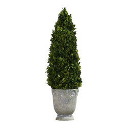 Uttermost Boxwood Cone Topiary - Preserved, natural evergreen foliage potted in a light stone finished, ceramic planter. Preserved, natural evergreen foliage potted in a light stone finished, ceramic planter.