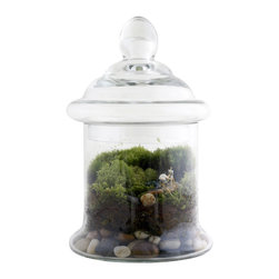 Twig Terrariums - Petit Perspective - This terrarium is a perfect vista for a sweet little artist, who knows exactly where to go for inspiration. This piece ships readymade with artist, petrified wood, and blue beach glass for you to miniscape your new little green world.  Figures may vary, but we promise they're all adorable.