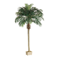 Silk Plants Direct - Silk Plants Direct Phoenix Palm Tree (Pack of 2) - Pack of 2. Silk Plants Direct specializes in manufacturing, design and supply of the most life-like, premium quality artificial plants, trees, flowers, arrangements, topiaries and containers for home, office and commercial use. Our Phoenix Palm Tree includes the following: