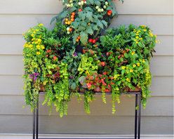 "Patio Stand for 44"" Windowbox - njoy Pamela Crawford side planting Window Boxes on patios, against deck railings or against siding (where you don't want to drill mounting holes)."