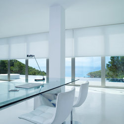 Sample Pictures - Custom Roller Shade