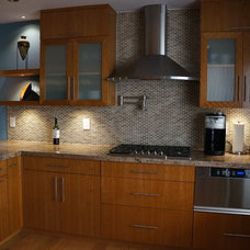 Contemporary Kitchen Cabinetry by Sainz Cabinets