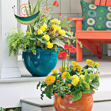 Modern Outdoor Pots And Planters by Gardener's Supply Company