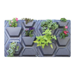 Hex Plantscape (2 Pack) - The geometric design of these Hex planters gives every garden a clean, modern look. These vertical garden planters allow you to have a durable garden without ground space, so they are perfect for city-dwellers and space-savvy gardener.