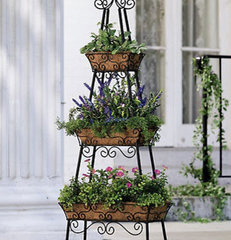 traditional outdoor planters by Collections Etc.