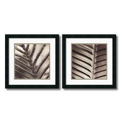Amanti Art - Abstraction - Set by Jesse Canales - Self-taught photographer Jesse Canales finds the Abstract Art in nature's simplest designs. Striking and minimalist, these black & white photography prints lends any decor a Contemporary feel.