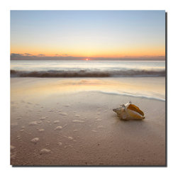 Franklin Arts - Contemporary Seascape Photography - Artwork on Metal - Title: ASHORE