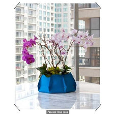 Contemporary Indoor Pots And Planters by Burke Decor