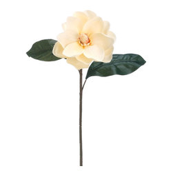 Silk Plants Direct - Silk Plants Direct Magnolia (Pack of 6) - Vanilla - Pack of 6. Silk Plants Direct specializes in manufacturing, design and supply of the most life-like, premium quality artificial plants, trees, flowers, arrangements, topiaries and containers for home, office and commercial use. Our Magnolia includes the following: