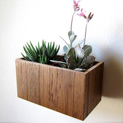 """Wood Wall Planter - Give your plants a new home: hanging from your wall. Perfect for succulents, cacti or other small house plants, this wall planter will hang 1/2"""" away from the wall's surface, giving it a floating illusion."""