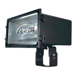 Eurofase Lighting - Eurofase Lighting 23258 Architectural Flood Light - Solid and convenient, this flood light is a intelligent choice for your needs. Reward yourself with this stable flood light utilizing incandescent bulbs.Features: