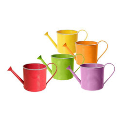 None - 5-inch Assorted Watering Cans Set of 5 - Add a pop of color to your garden with these brightly colored watering cans. These 5-inch silver-rimmed watering cans serve as fully functional planters and come complete with a liner.
