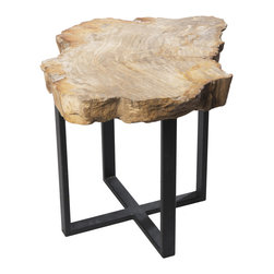 """Petrified Forests - Petrified Wood Williamsburg Side Table - Each piece is 20 million years in the making. Petrified woods are essentially trees that time has very slowly turned to stone. Hand-selected from around the globe, your fossil piece is unique in shape with the colors reflecting minerals present during the petrification process. This limited resource is harvested sustainably, preserved eternally, and sure to increase in value. This side table is a great addition to any living room or apartment and looks great with cocktails or even a PBR.  This piece, like all of our pieces, is a completely unique piece of furniture.     Height: 17.5""""   Width: 27.5""""   Depth: 17.5""""    Weight: 55 lbs"""