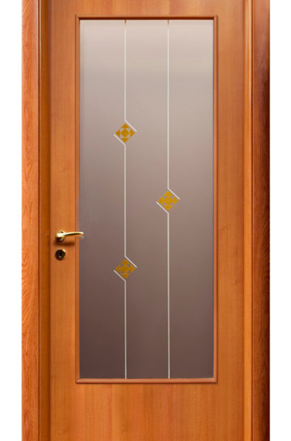 Contemporary Interior Doors by EVAA Home Design Center
