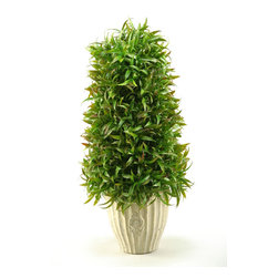 D&W Silks - D&W Silks Wild Grass Cone Topiary in Ceramic - If you're looking for a quick touch of greenery for a design space, look no further than to this wild grass piece to naturally liven your area. With a sturdy ceramic planter, this piece will go great in any office or home. No care or maintenance required, just dust lightly occasionally. Comes assembled as pictured and will maintain its color and shape for years to come.