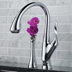 Kitchen Products - Brizo Belo single handle kitchen faucet.