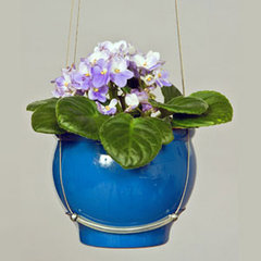 traditional outdoor planters by aHa! Modern Living