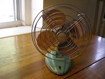 Modern  Vintage Fan (from Flickr user jagosaurus)