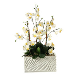 "D&W Silks - Artificial Cream Phaeleanopsis Orchids With Foliage in White Resin Planter - It's amazing how much adding a plant can change the look of a room or decor, but it can be difficult if your space is not conducive to growing plants, or if you weren't exactly born with a ""green thumb."" Invite the beauty of nature into your home without all the upkeep with this maintenance-free, allergy-free arrangement of artificial cream phaeleanopsis orchids with foliage in a white resin rectangle planter. This is not a living plant."