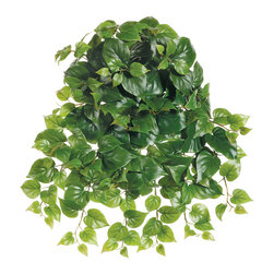 Silk Plants Direct - Silk Plants Direct Philodendron Vine Hanging Plant (Pack of 12) - Pack of 12. Silk Plants Direct specializes in manufacturing, design and supply of the most life-like, premium quality artificial plants, trees, flowers, arrangements, topiaries and containers for home, office and commercial use. Our Philodendron Vine Hanging Plant includes the following: