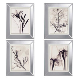 Paragon - Florals PK/4 - Framed Art - Each product is custom made upon order so there might be small variations from the picture displayed. No two pieces are exactly alike.