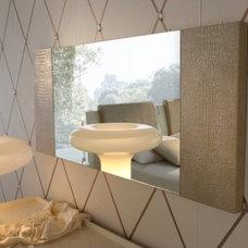 Modern Mirrors by AllModern