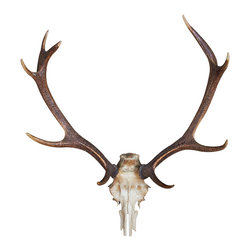 Walls Need Love - Deer, Adhesive Wall Decal - Want to convince everyone that youre a brilliant hunter? Scared to actually fire a gun? No problem. This deer skull wall decal is so realistic your buddies with slap your back and punch your arm over this accomplishment. This is a 2-dimensional, adhesive wall sticker used for decorative purposes.