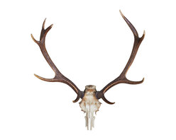Walls Need Love - Deer Skull Decal - Want to convince everyone that youre a brilliant hunter? Scared to actually fire a gun? No problem. This deer skull wall decal is so realistic your buddies with slap your back and punch your arm over this accomplishment.