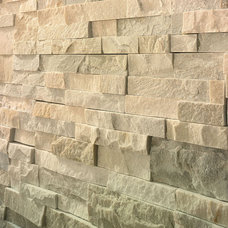Contemporary Wall And Floor Tile by B•D•G Design Group