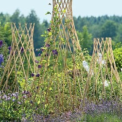 Willow Trellises - I saw these trellises and thought I had the answers to my prayers. Yes, I can make fully functioning trellises with scrap wood but they don't have nearly the same effect as these. They look great and are totally functional.