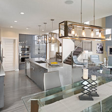 Contemporary Ceiling Lighting by Homes by Avi