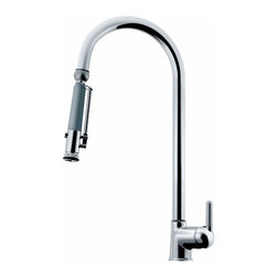 Elkay Moda Single Handle Kitchen Faucet - We just discovered this faucet and love its looks and functionality with a head that rotates 180 degrees and pulls out as a spray. Really nicely designed.