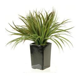 D&W Silks - D&W Silks Brown / Green Grass In Tall Square Ceramic Planter - Brown / Green grass in tall square ceramic planter