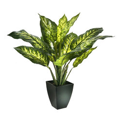 Regency International - Dieffenbachia Pot - Elevate the interior with the vibrant greenery of this wilt-free plant.   24'' H Polyester / plastic / iron Imported
