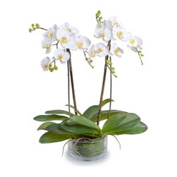 New Growth Designs - Phalaenopsis Orchid Arrangement, White Purple - Real orchids are so high maintenance — no wonder you're scared to take them on. Don't sacrifice — enjoy their beauty with these care-free faux orchard arrangement, which comes attached to bamboo stakes in a low glass bowl.