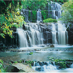 """Pura Kaunui Falls Wall Mural - This Pura Kaunui Falls wall mural brings the natural splendor of the grand multi-tiered New Zealand waterfall to life. With  photorealistic quality this giant mural fills a wall with a mesmerizing scene of cascading water set in a lush forest. The beautiful Kaunui Falls mural is 12' 9"""" x 8' 10"""" and is simple to install."""