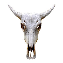 Walls Need Love - Traditional Antelope Bull Skull Mount Decal - Bring some zesty southwest camp to your urban or suburban home with an antelope bull skull decal. It looks 3D, is easy to install and remove — and will certainly be a conversation piece.