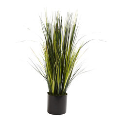 "Nearly Natural - Nearly Natural 3' Onion Grass Plant - Everyone loves the dense, bold beauty of onion grass. But, of course, it's tough to grow, and then there's the matter of those little onion bulbs that definitely have that onion odor. Well, here's all the good, with none of the bad. Standing three feet in height, this onion grass piece is full of lush, straight stalks, without the ""oniony"" smell. Plus, it'll stay that way for years, with nary a drop of water. Perfect for an interesting home or office decoration."