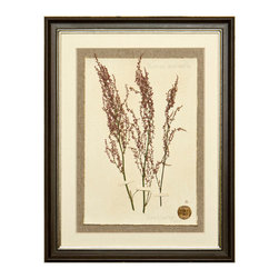 Botanicals Flowers H - Dark Pink Heather - Framed - A stunning framed display of a flattened botanical specimen with many different options available to suit your mood or d�cor. Each specimen is one of a kind and no two will be alike. For those who desire uniqueness in their wall hangings, the Botanicals Collection can be placed in a room alone or with many clustered together for wonderful way to bring your love of nature indoors.