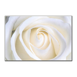 Vibrant Canvas Prints - Canvas Photo Prints, Framed 3 Panel Waterfall Stream Natureand Decor - This is a beautiful, 100% quality cotton canvas print. This print is perfect for any home or office, and will make any room shine with its addition of color and beauty.  - Modern Home and Office Interior Decor   Flower Canvas Designs - 1 Panel Print   White Rose Flower Print on Canvas - Wall Art - 30 Day Money Back Guarantee.