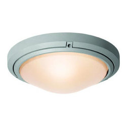 Access Lighting - Access Lighting 20355 Oceanus 1 Light Outdoor Wall Sconce - Product Features: