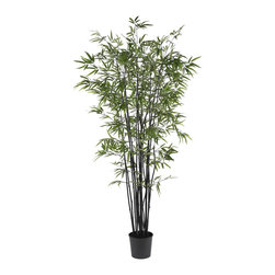 Nearly Natural - Nearly Natural 6.5' Black Bamboo Silk Tree - Add a touch of flair to your neutral home decor with this rare and exotic Black Bamboo Tree. Well known for its hardiness, this elegant looking bamboo will thrive without any water, sunlight, or pruning. Bright slender crisp leaves are a nice contrast to the deep rich color of its trunk. A full 6 feet tall, this unique tree contains over seventeen-hundred authentic styled leaves. A basic black pot blends well with the dark colored trunk.