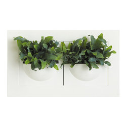 Green Gallery Double Planter - The Green Gallery Double Wall Planter is great for decorating any room. Each unit comes with both white and lime green frames and has a 4 inch deep bowl that is perfect for small plants and herbs. The bowl features a double bottom reservoir and fill tube.